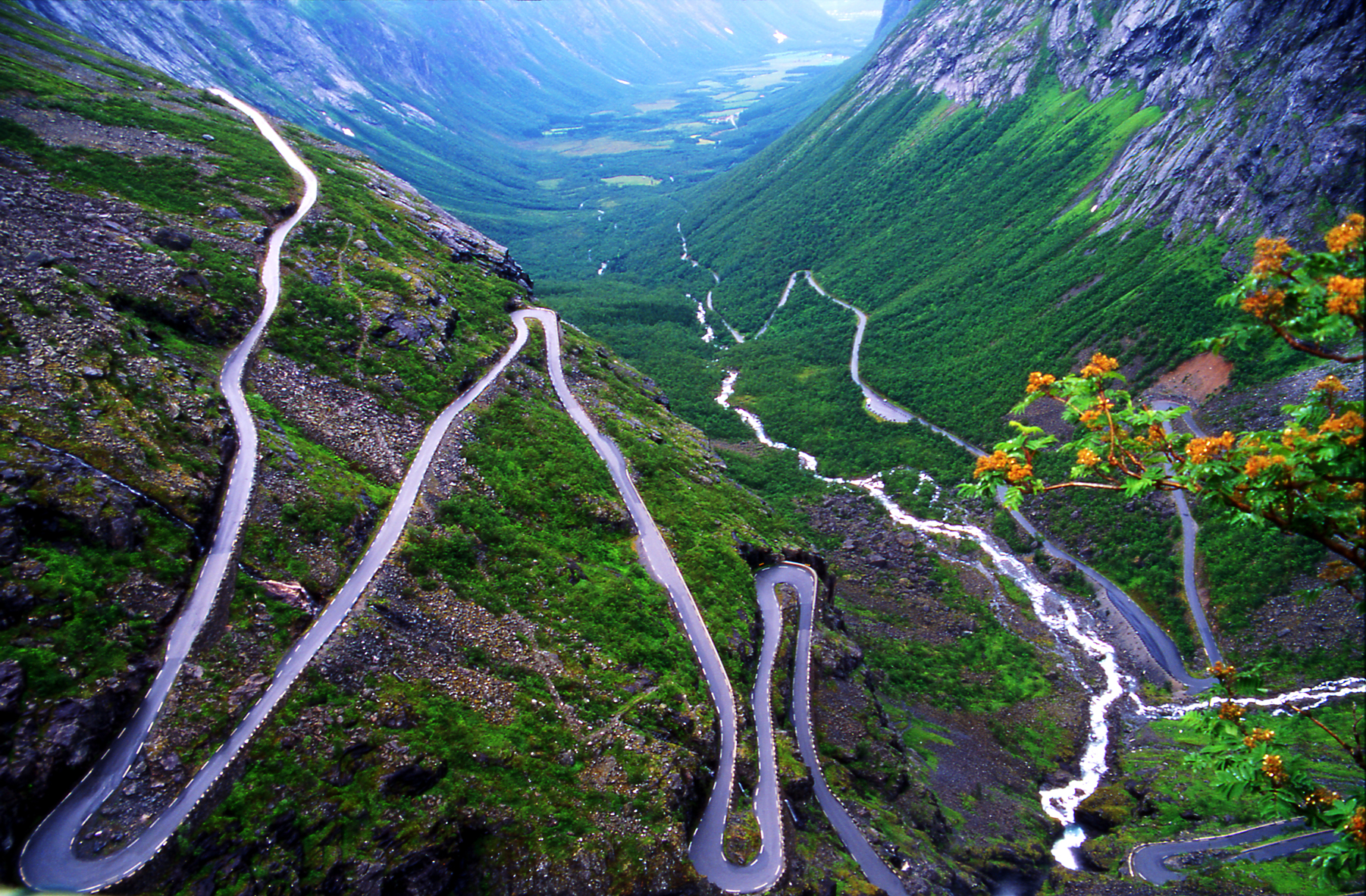 the long and winding road daily compass