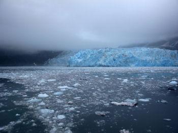 glacier-anchorage-alaska-prince-william-sound-global-warming-pic2